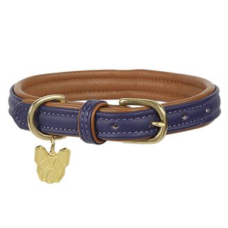 Shires Digby & Fox Padded Leather Dog Collar
