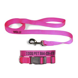 "3 Dog Pet Supply 1"" Wide Personalized Dog Collar with Lead Combo"