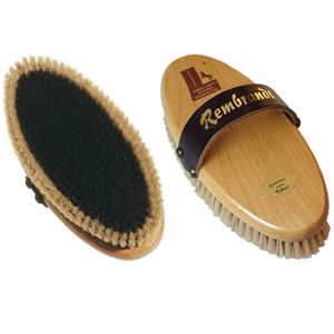Rembrandt Finishing Brush
