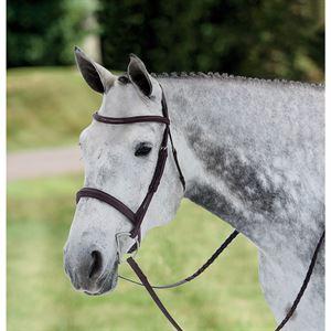 Ovation® Draft Cross Plain Raised Padded Bridle
