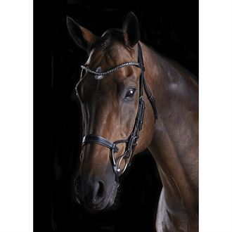 Collegiate® ComFiTec™ Crystal Bridle