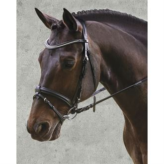 Waldhausen X-Line Supersoft Glam Bridle