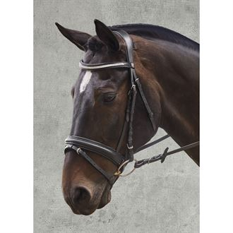 Waldhausen X-Line Darlington Bridle