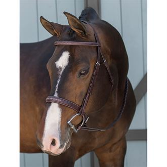 Dover Saddlery® Classic Derby Bridle
