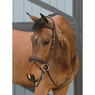 Dover Saddlery® InDulge™ Flash Bridle