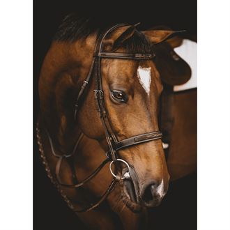 Arion Fancy-Stitched Hunter Bridle