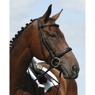 Collegiate® Syntovia+ Padded Raised Cavesson Bridle