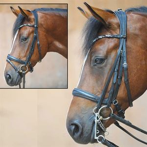Ivonne Convertible Bridle
