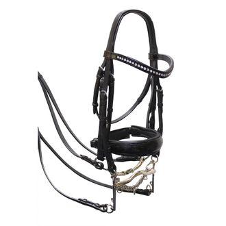 Royal Oak Patent Leather Double Bridle