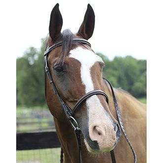 Henri de Rivel Pro Fancy Raised Bridle with Laced Reins