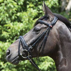 Kieffer Perseus Clincher Snaffle Bridle