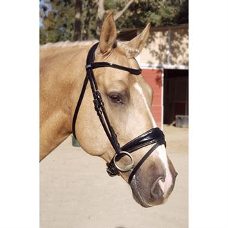 Stübben Patent Switch Combo Bridle