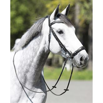 Horze Bergen Leather Remont Bridle