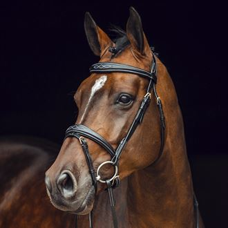 Horze Sion Bridle with Reins
