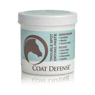 Coat Defense® Trouble Spot Drying Paste