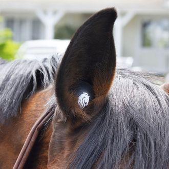 Equinavia Ear Buds (Three Pairs)