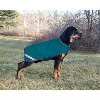Rider's International® by Dover Saddlery® Lightweight Dog Blanket