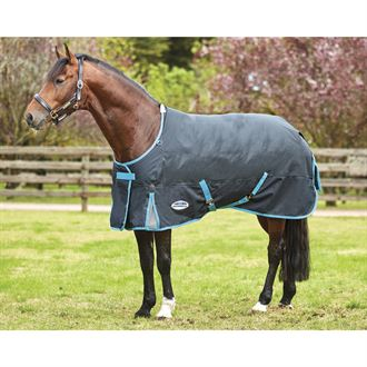 WeatherBeeta® ComFiTec™ Free Standard Neck Medium Weight Turnout Blanket with FREE Halter