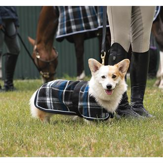 Dover Saddlery® Premium Plaid Wool Dog Blanket