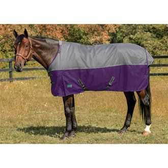 NorthWind® by Rider's International Plus Heavyweight Turnout Blanket