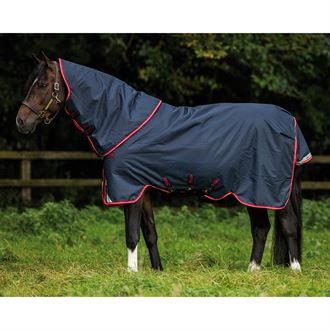 Horseware® Ireland Amigo® Bravo 12 Plus Medium-Weight Turnout - 250g