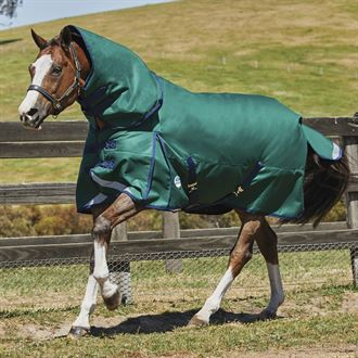 WeatherBeeta® ComFiTec™ Plus Dynamic Detach-A-Neck Heavyweight Turnout Blanket