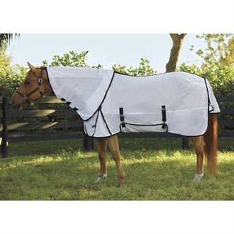 Riders International® by Dover Saddlery® Removable Neck Fly Sheet with Belly Band