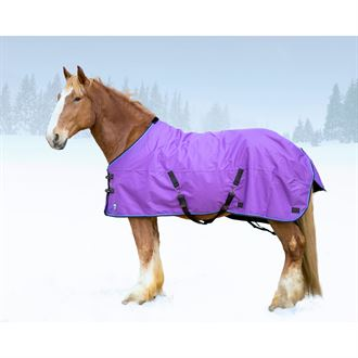 Kensington™ Draft All Around Medium-Weight Turnout Blanket