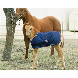 Kensington™ Foal All Around Adjustable Medium-Weight Blanket