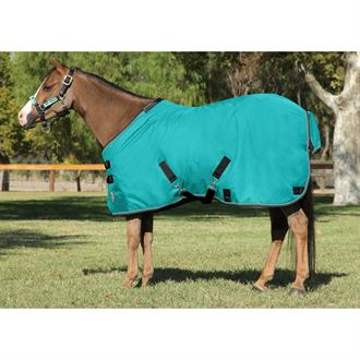 Kensington™ Pony All Around Heavyweight Turnout Blanket