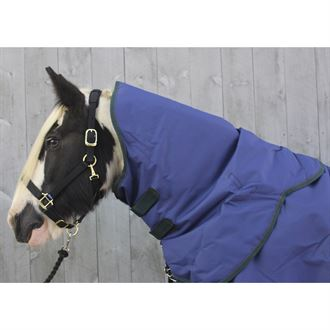 Shires Highlander 200G Neck Cover