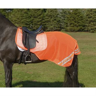 Shires Equi-Flector® Exercise Sheet