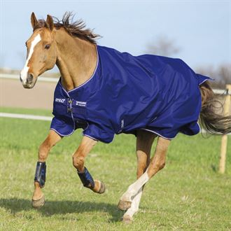 Horseware® Amigo® Hero Pony 900 Plus Medium-Weight Turnout Blanket