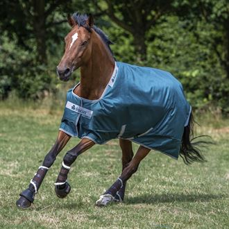 Bucas Atlantic 50 Gram Turnout Blanket