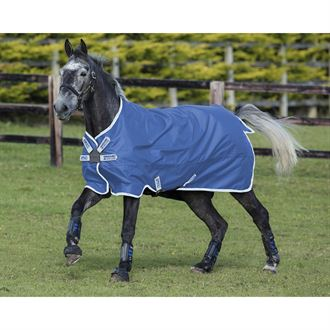 Horseware® Ireland Amigo® Hero 900 Turnout Lite with Disc Front Closure