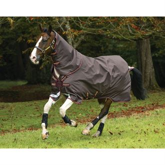 Horseware® Ireland Amigo® Bravo 12 Plus 100 Gram Turnout with Disc Front Closure