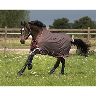 Horseware® Ireland Amigo® Bravo12 Turnout Lite with Disc Front Closure