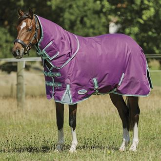 WeatherBeeta® Pony ComFiTec™ Premier Free II Detach-A-Neck Medium-Weight Turnout Blanket