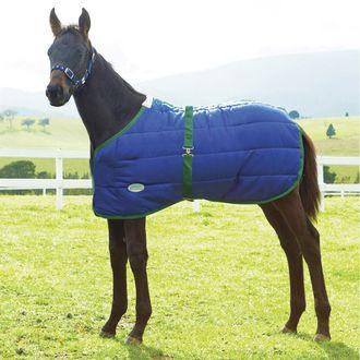 WeatherBeeta® Newborn Foal 420D Standard Neck Medium-Weight Blanket