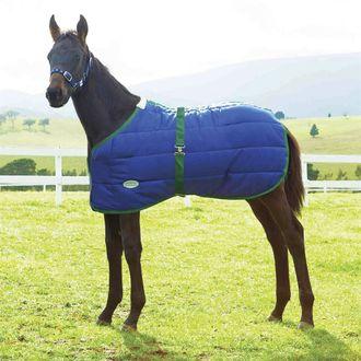 WeatherBeeta® Growing Foal 420D Standard Neck Medium-Weight Blanket