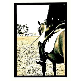 Dressage Ride Blank Note Card