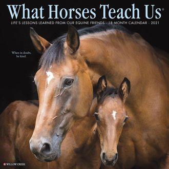 2021 What Horses Teach Us Calendar