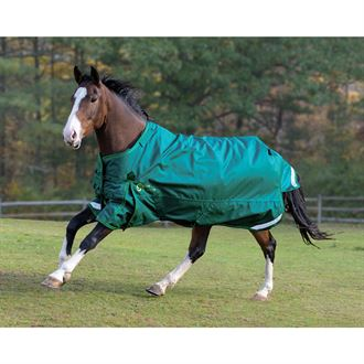 Shires StormCheeta 200G Blanket & Neck Set