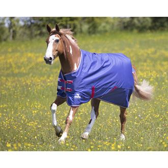 Shires Tempest Original 100G Air Motion Turnout Sheet