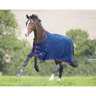 Shires Highlander 300G Blanket