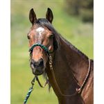 Kensington™ Rope Halter with Side Pull