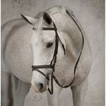 Suffolk® by Dover Saddlery® Flash Bridle