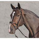 Horseware® Amigo® Deluxe Bridle