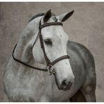 Dover Saddlery® Single Crown Hunter Bridle