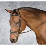 CROWN PADDED BRIDLE